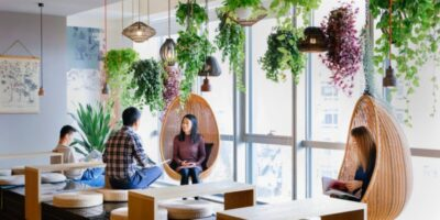 Air-Purifying Indoor Plants You Can Add to Your Office Design